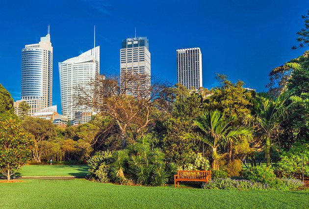 """حدائق """"رويال بوتانيك""""-واحة هادئة وسط صخب المدينة"""