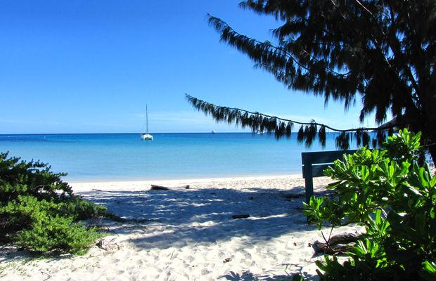جزيرة ليزارد Lizard Island في استراليا