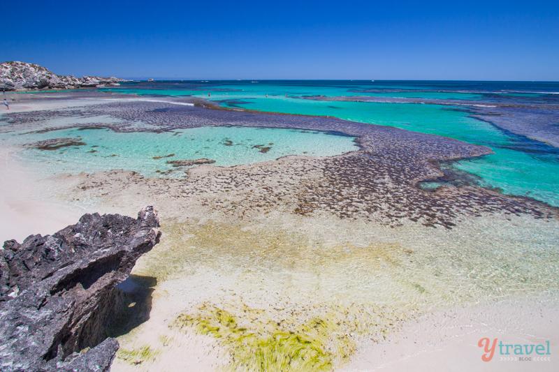 شواطئ أستراليا