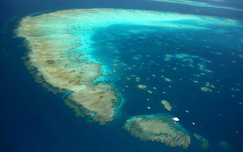 الغوص الحاجز المرجاني العظيم Great Barrier Reef