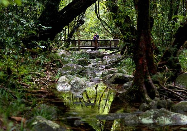 جمال الطبيعة في حديقة دينتري الوطنية