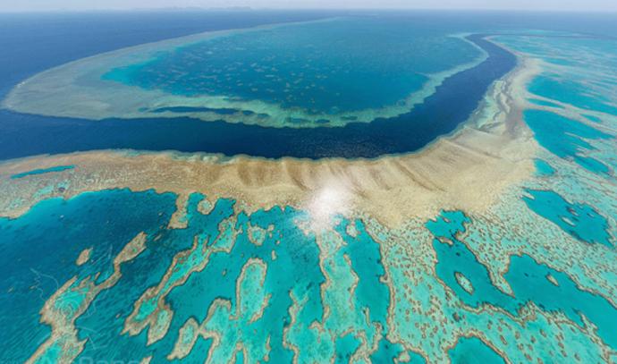 الحاجز المرجاني العظيم .. درب من الخيال علي أرض الواقع