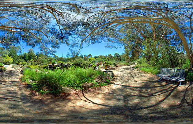 الحدائق النباتية الوطنية الأسترالية Australian National Botanic Gardens